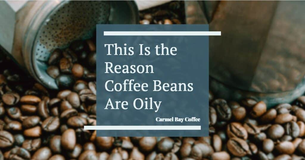 This is the reason coffee beans are oily