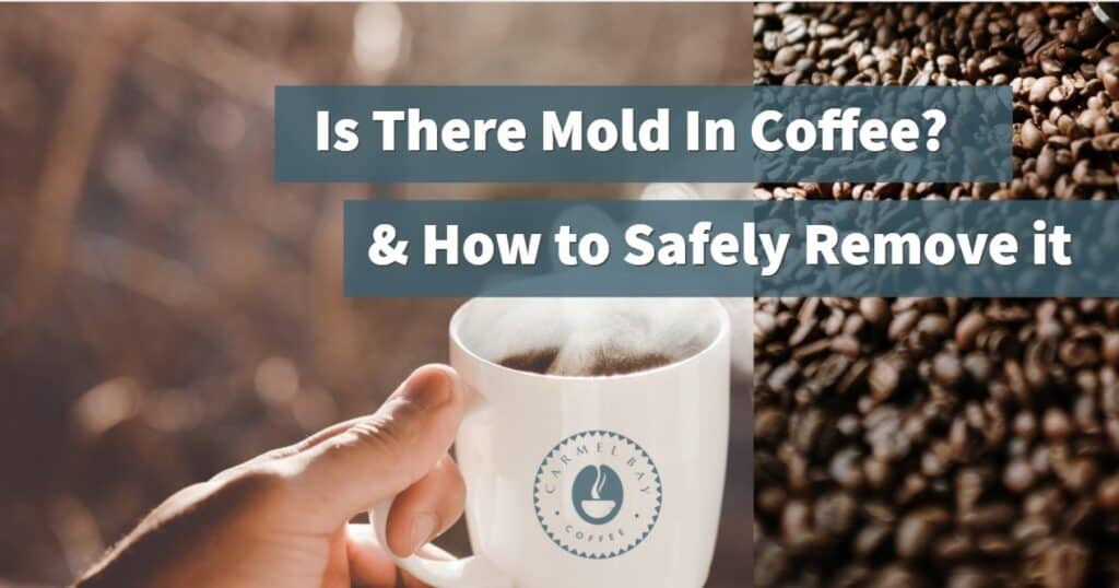 Why does coffee get moldy
