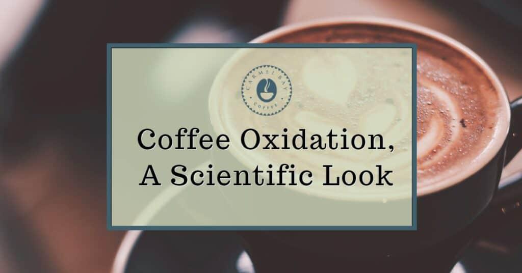 Coffee Oxidation, A Scientific Look