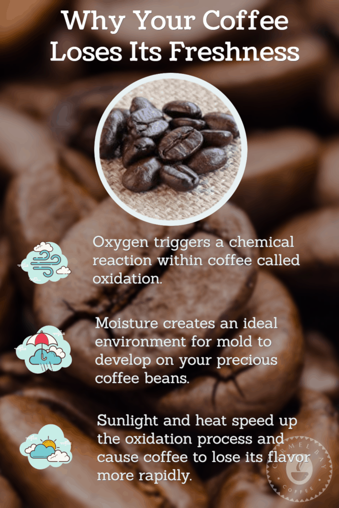 Why Your Coffee Loses Its Freshness